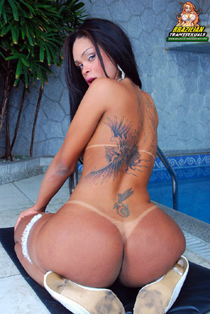 Big Booty Tanned Shemale Ass