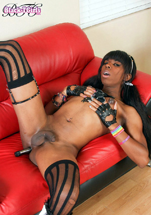 Ebony Shemale Dick Pics