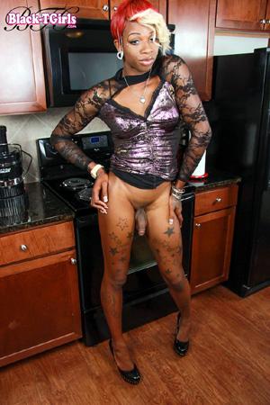 Big Cock Hung Black Tranny Porn