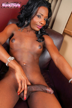 Big Dick Hung Black Tranny Porn