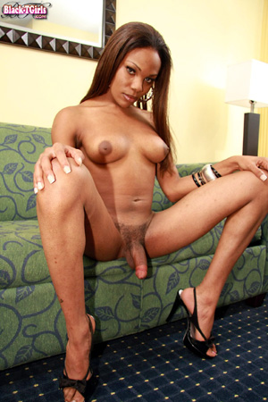 Hung Big Dick Ebony Shemale