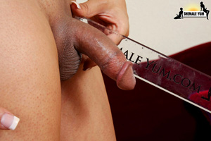 Latina Shemale Little Dick Tease